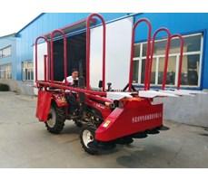 Máy gặt ngô,máy thu hoach ngô ,Máy thu hoạch thân cây 4G-2.2CCorn