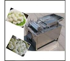 Máy bóc vỏ trứng gà  HC-BK