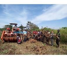 Máy đào củ mì hay củ sắn Kamast  MSU1600