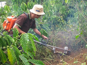 Máy xạc cỏ, máy làm cỏ cà phê