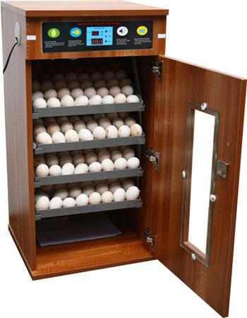 máy ấp trứng 200 trứng